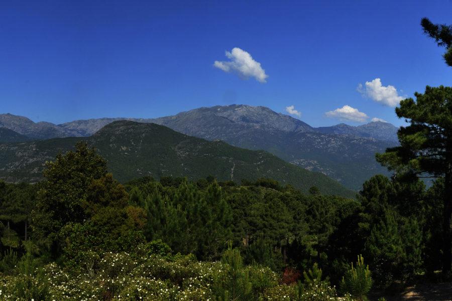 Sentier da u pinu à u Piralzu